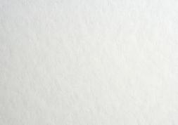 4.パルパー|ホワイト 四六判Y目 170kg