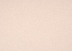 4.里紙|桜 四六判Y目 170kg