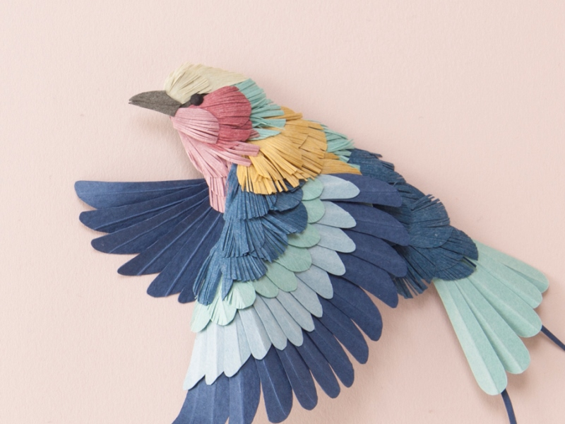 鳥類漢字一覧表 - kanjinowa.com