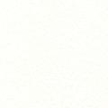【本文】アラベール ウルトラホワイト 四六判Y目 160kg